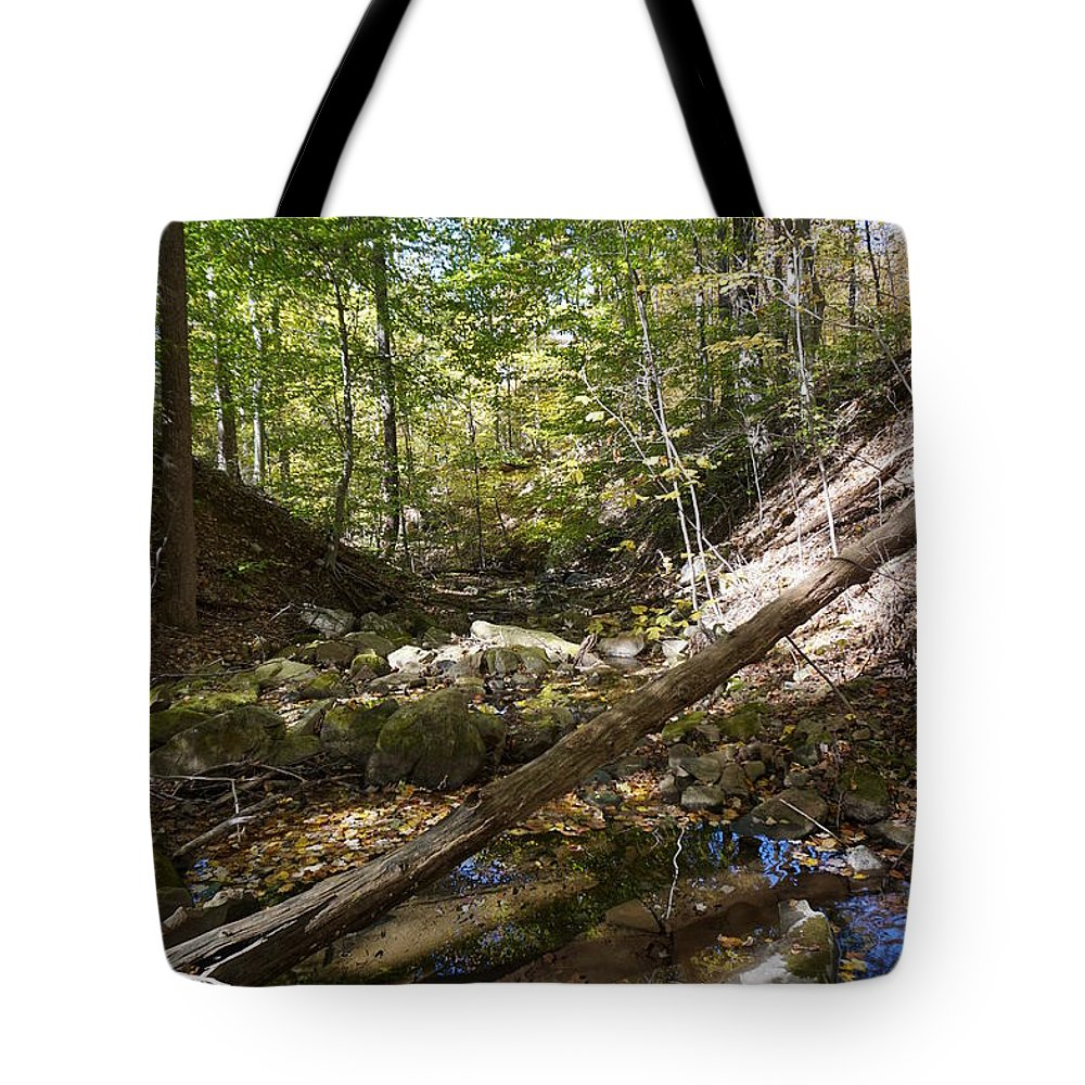 Wall Art Tote Bag featuring the photograph Bark Rocks 4 by Chris Naggy