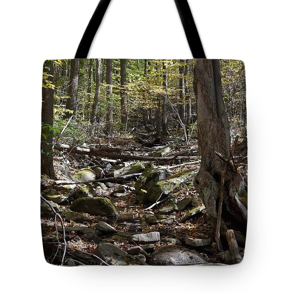 Wall Art Tote Bag featuring the photograph Bark Rocks 5 by Chris Naggy