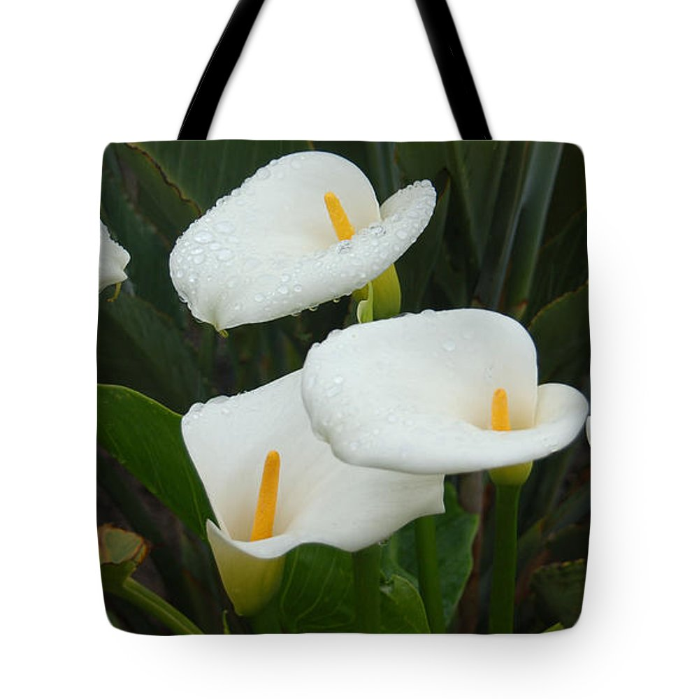 White Calla Lilies Tote Bag featuring the photograph Calla Calypso by Suzanne Gaff