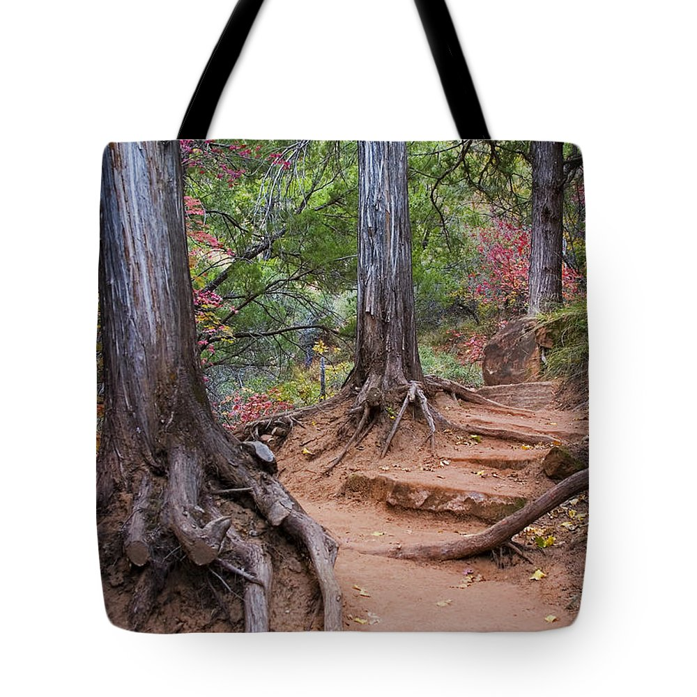 3scape Tote Bag featuring the photograph Colors of Zion by Adam Romanowicz