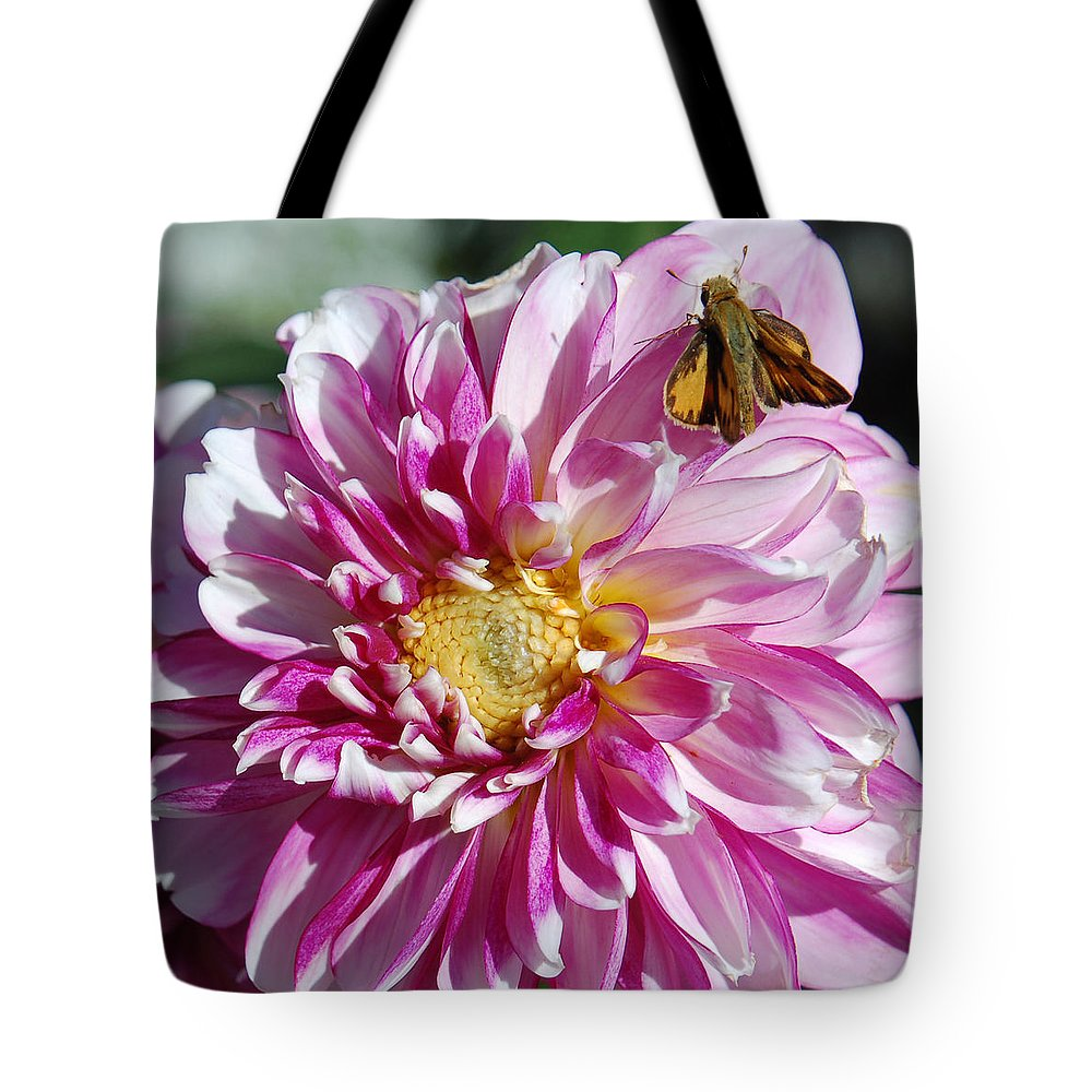 Dahlia Tote Bag featuring the photograph Dahlia Days by Suzanne Gaff
