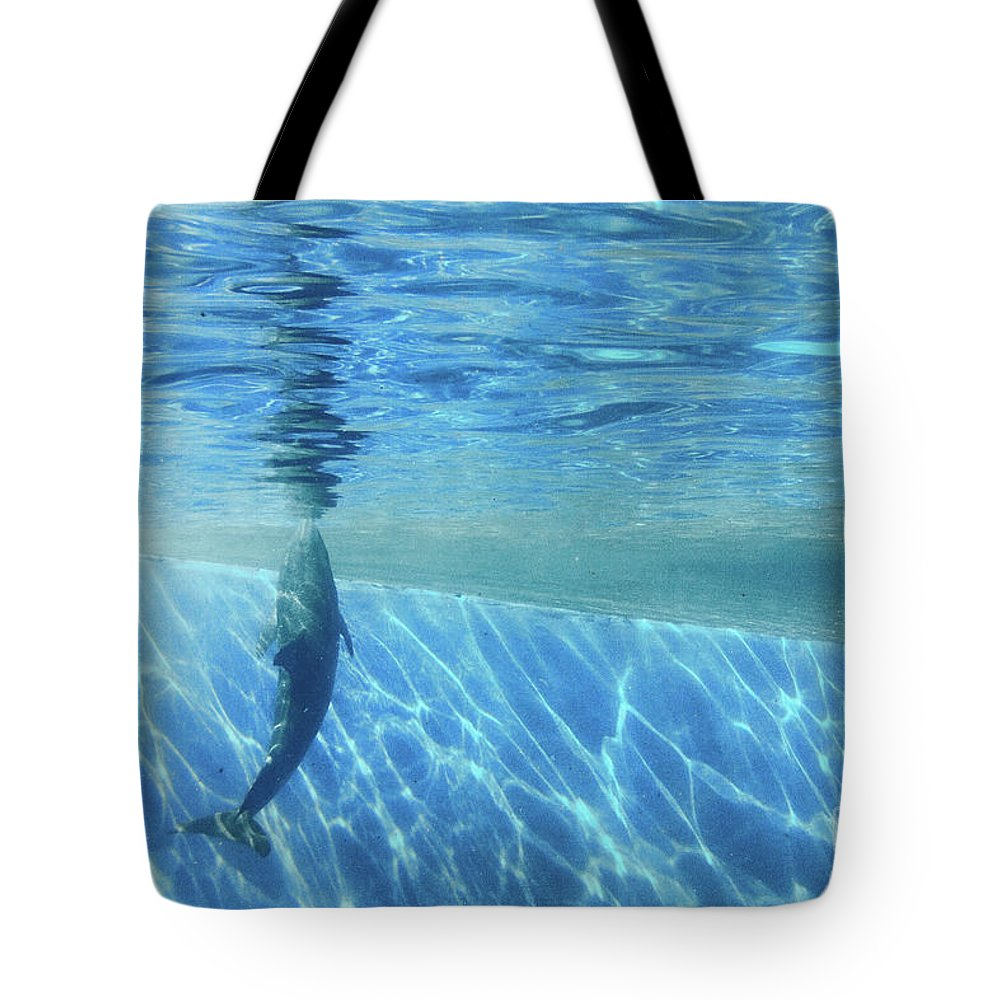 Abstracts Tote Bag featuring the photograph Deep Blue by Marilyn Cornwell
