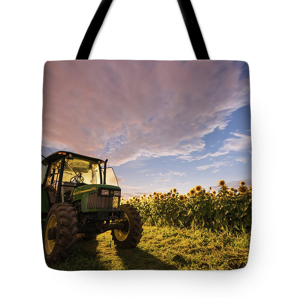 Sunflower Field Tote Bag featuring the photograph Do Sunflowers Sleep by Kristopher Schoenleber
