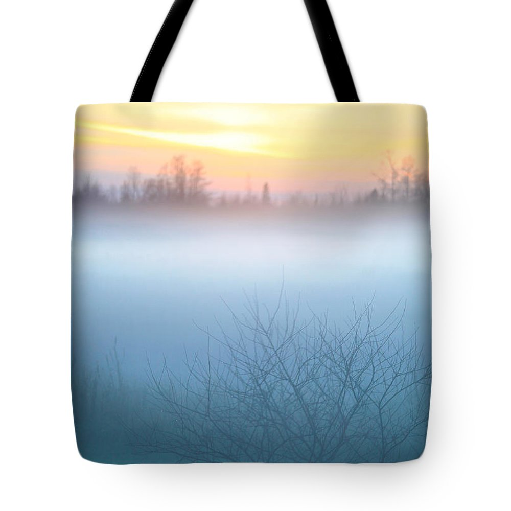 Fog Tote Bag featuring the photograph Evening Fog by Trevor Slauenwhite