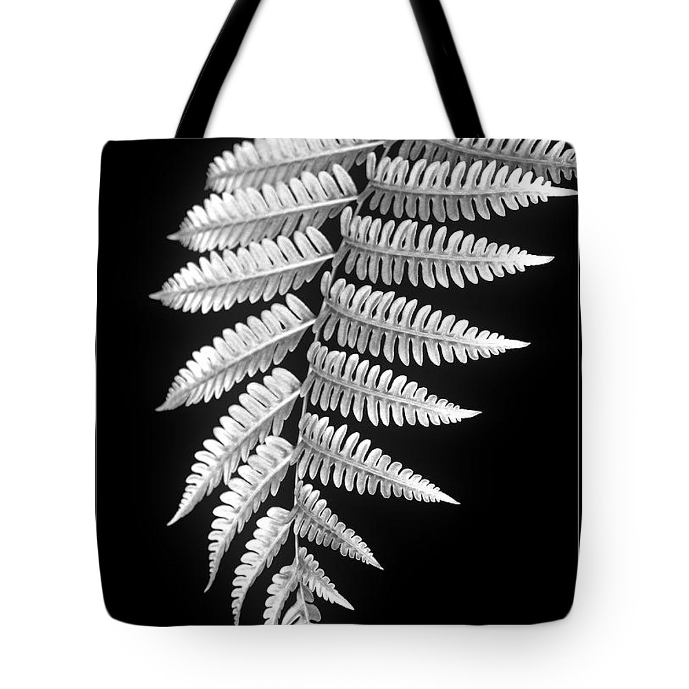 Australia; Floral Tote Bag featuring the photograph Fern Dance by Holly Kempe