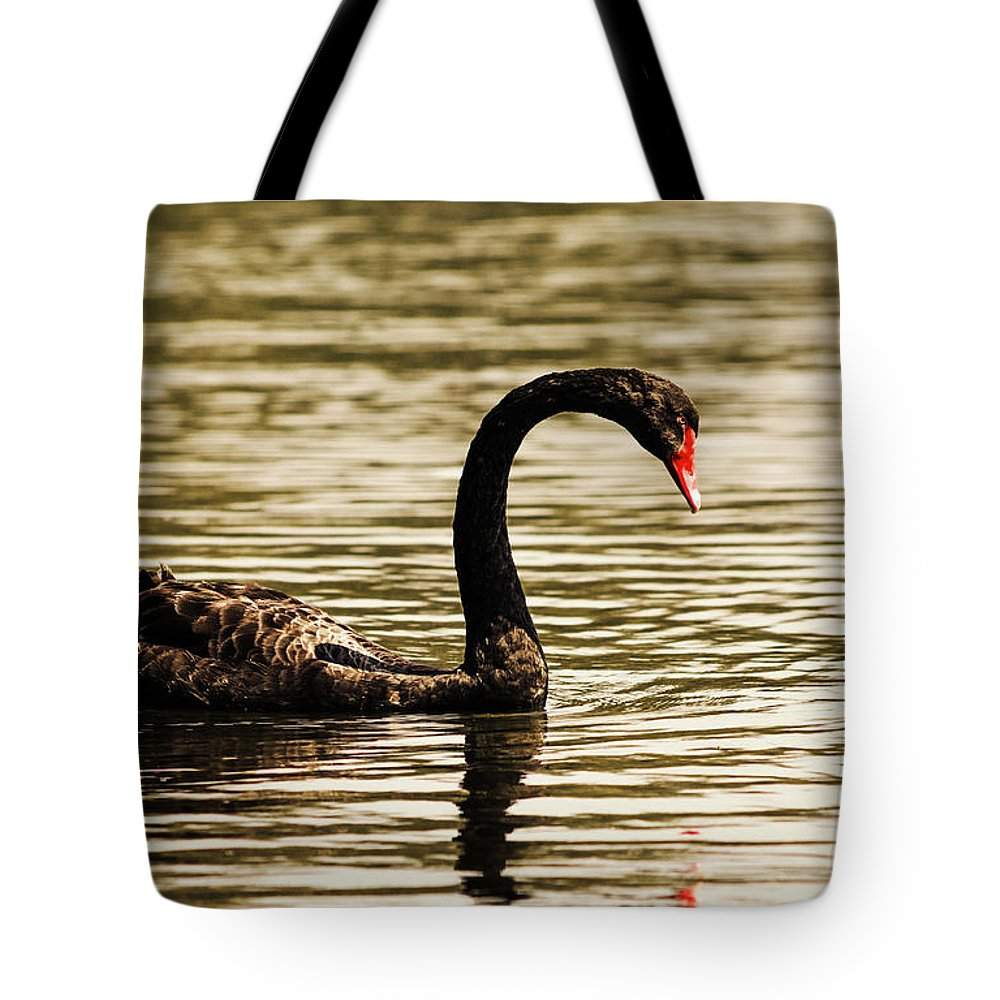 Birds Tote Bag featuring the photograph Graceful Way by Jorgo Photography - Wall Art Gallery