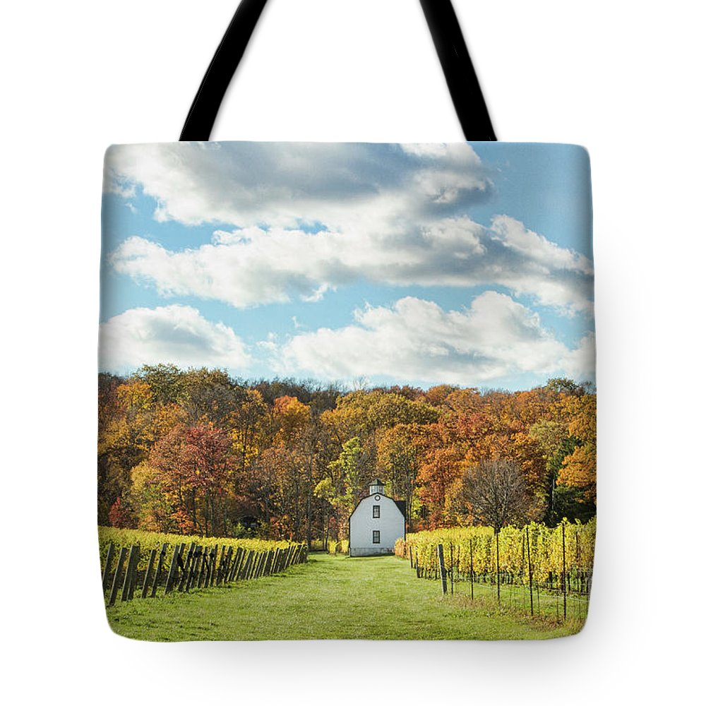 Lake Ontario Tote Bag featuring the photograph Hidden Bench by Marilyn Cornwell