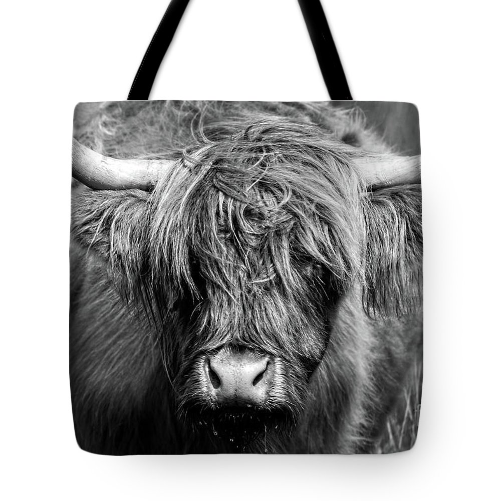 Highland Tote Bag featuring the photograph Highland Cow, Black And White Portrait by Delphimages Photo Creations