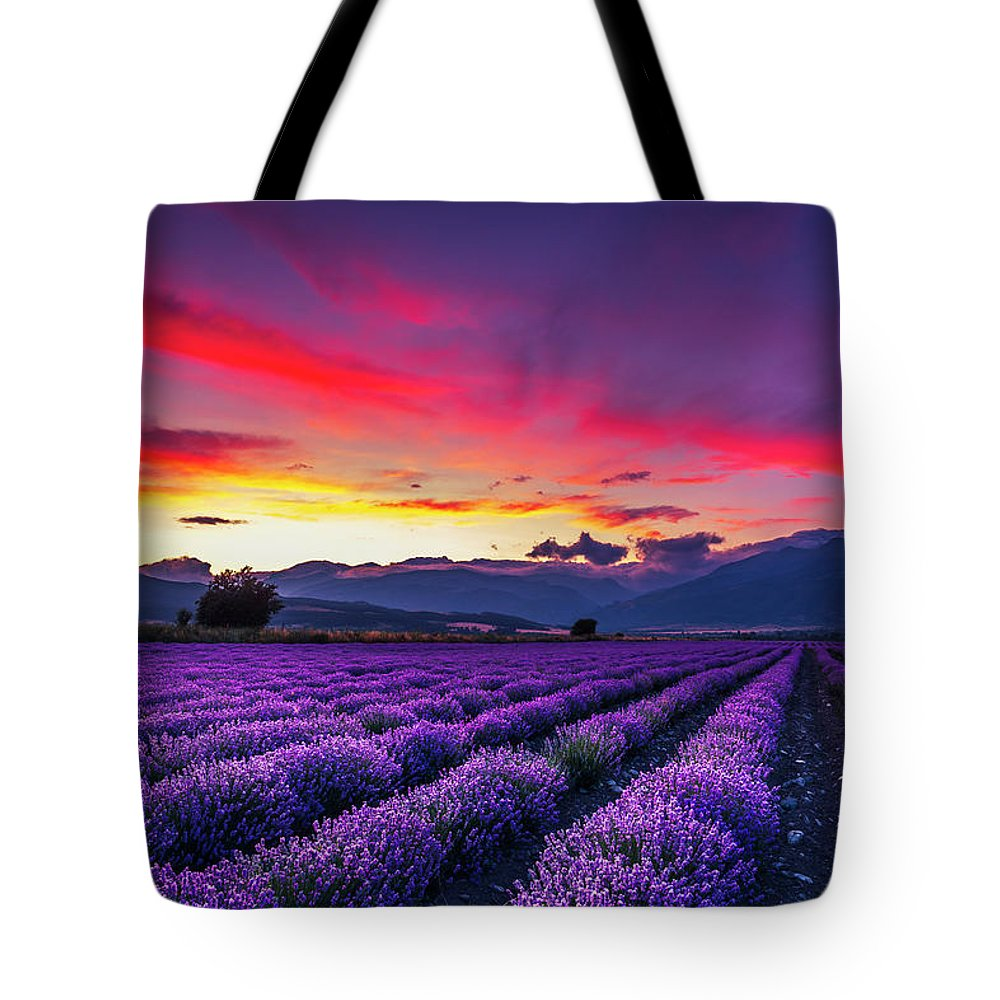 Dusk Tote Bag featuring the photograph Lavender Season by Evgeni Dinev