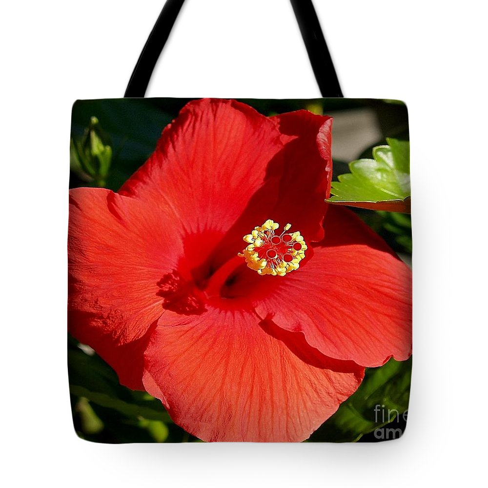 Fine Art Photography Tote Bag featuring the photograph Leila by Patricia Griffin Brett
