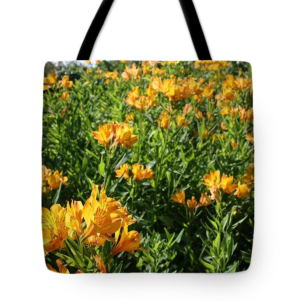 Orange Sunset Tote Bags