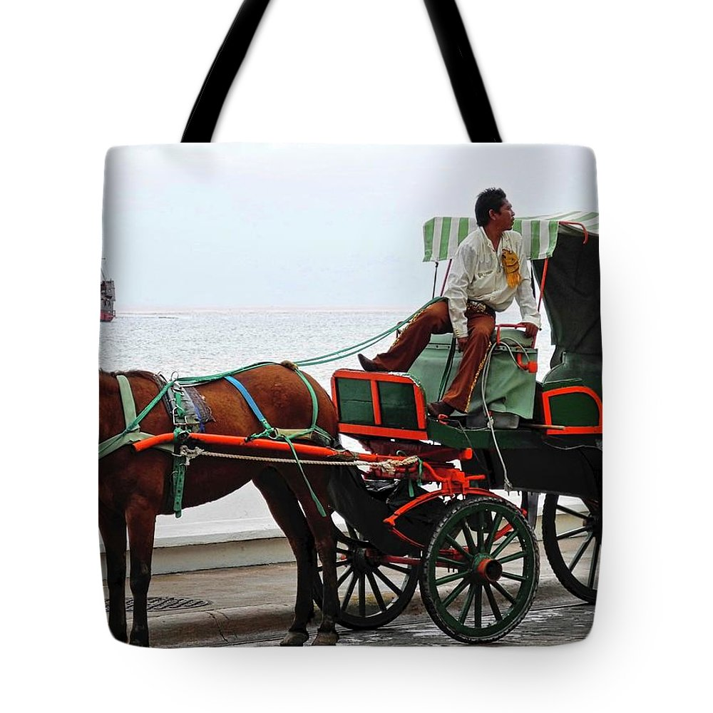 Horse Tote Bag featuring the photograph Lovely Transportation in Cozumel by Kirsten Giving