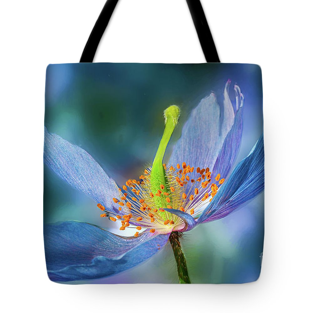 Conservatories Tote Bag featuring the photograph New Day Flower by Marilyn Cornwell