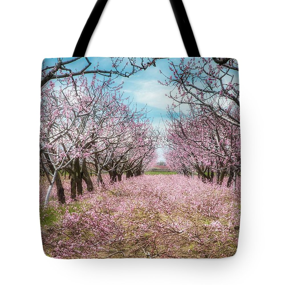 Blossoms Tote Bag featuring the photograph Niagara's Blossom Trail - Enclosed by Marilyn Cornwell