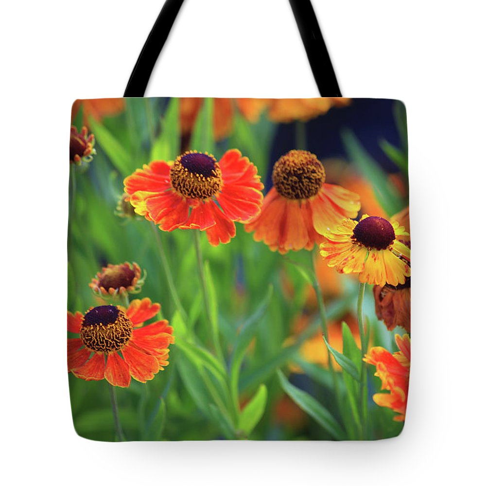 Daisy Tote Bag featuring the photograph Orange Cone Daisies by Trevor Slauenwhite