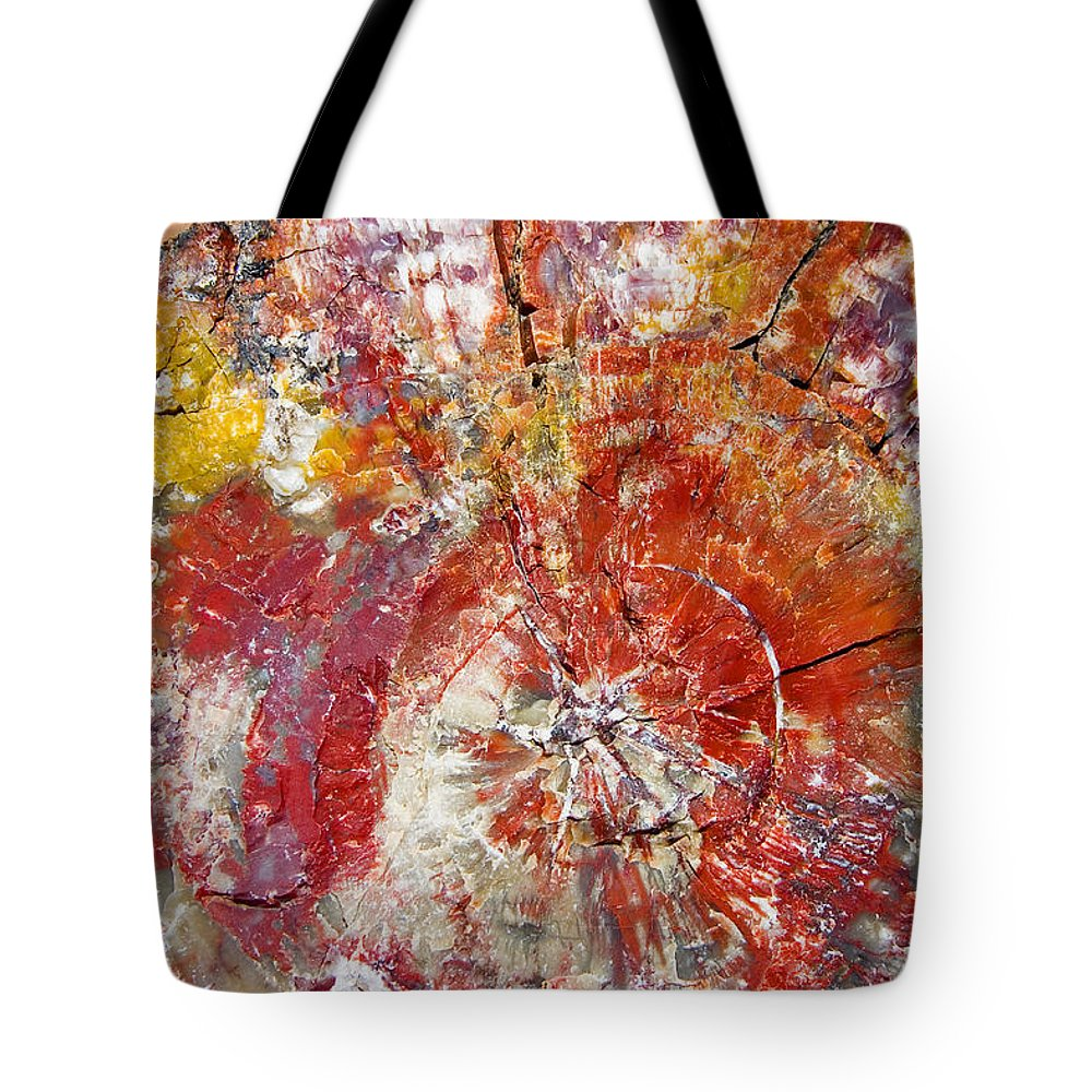 Petrified Wood Stone Texture Abstract Color Skip Hunt Tote Bag featuring the photograph Painted Desert Wood 1 by Skip Hunt