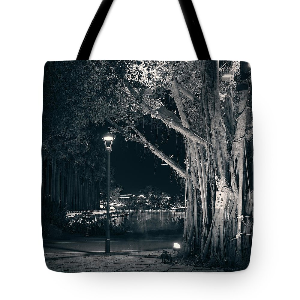 Night Tote Bag featuring the photograph Park Silence. Zhangzhou, 2019. by Mayk's PhotoArt