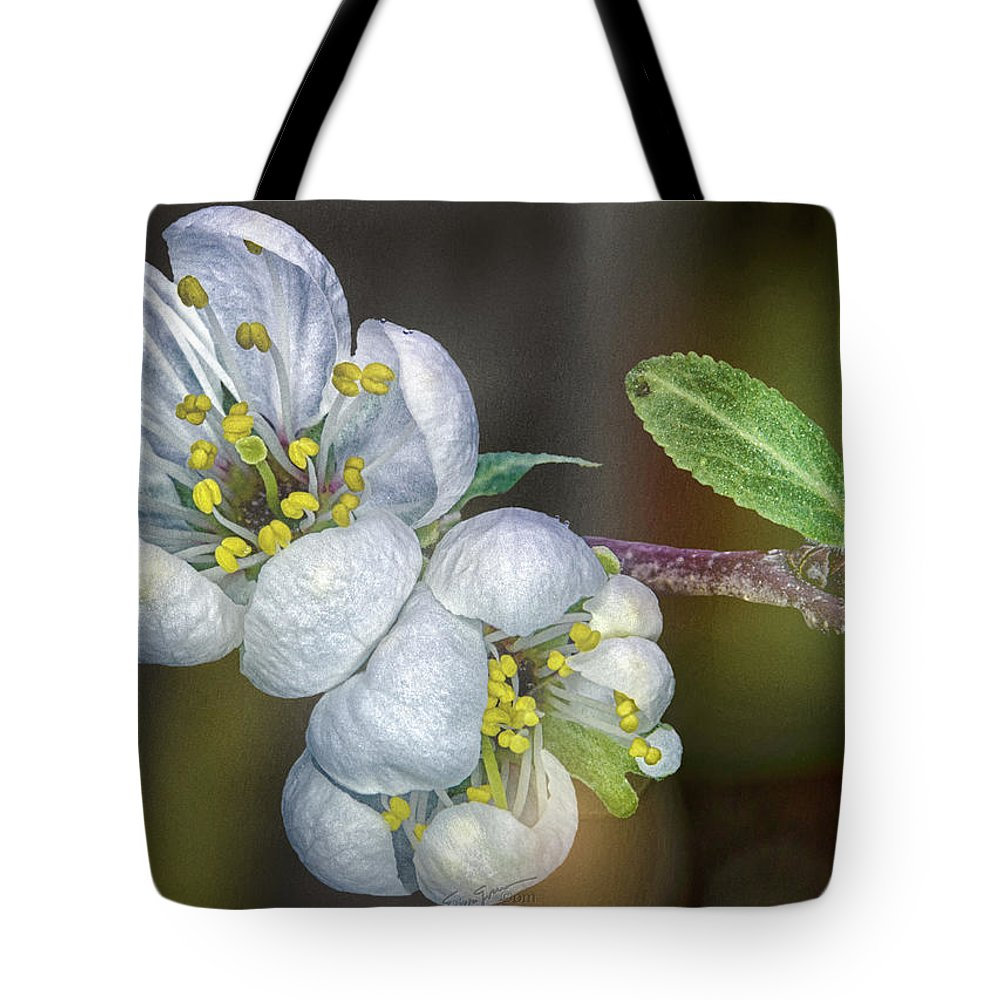 Texas Tote Bag featuring the photograph Photinia Spring by Erich Grant