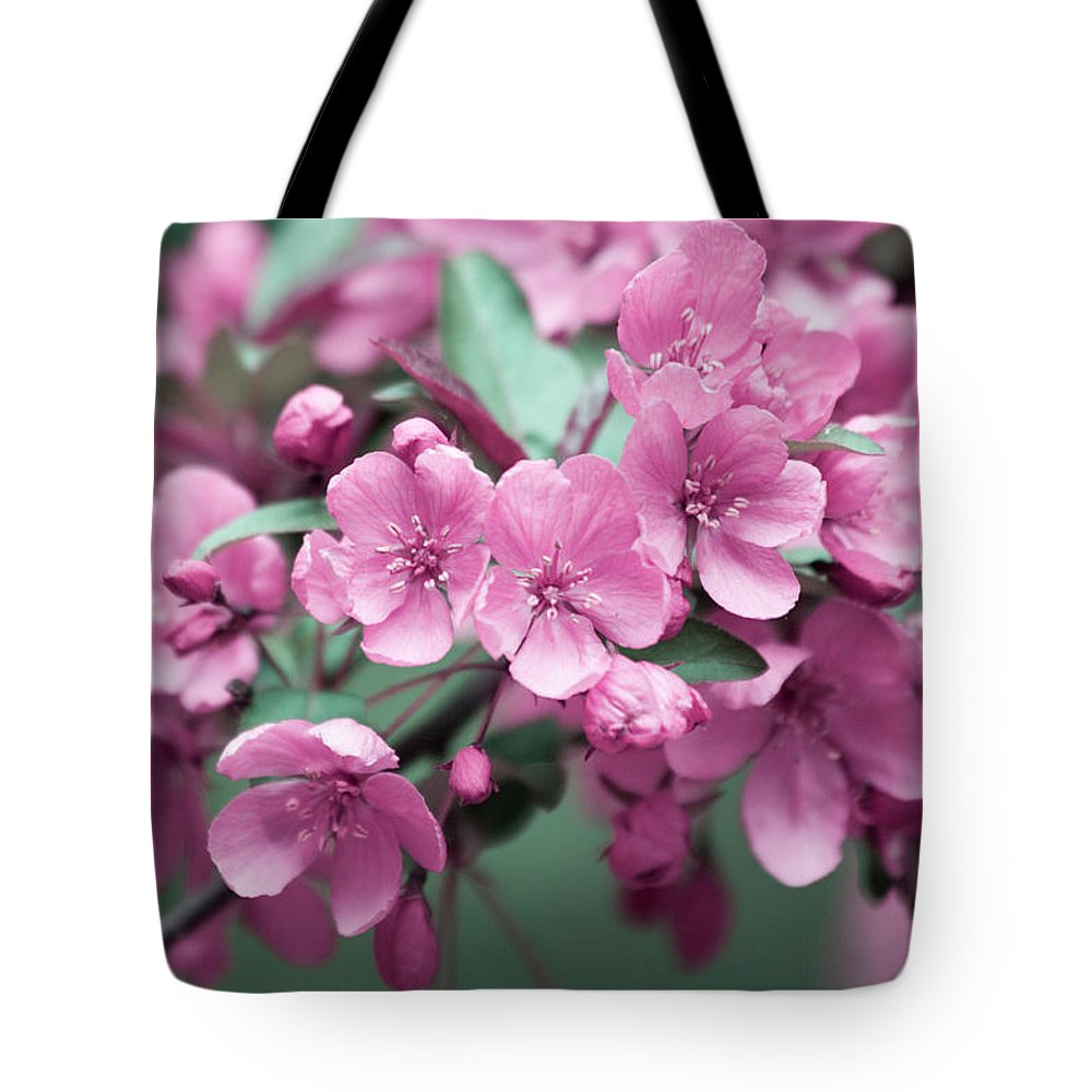 Cherry Blossoms Tote Bag featuring the photograph Pink Cherry Blossoms by Trevor Slauenwhite