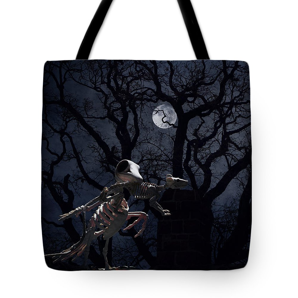 Raven Tote Bag featuring the photograph Raven and Rat Skeleton in Moonlight - Halloween by Colleen Cornelius