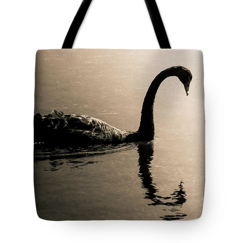 Water Tote Bag featuring the photograph Silhouetted by Jorgo Photography - Wall Art Gallery
