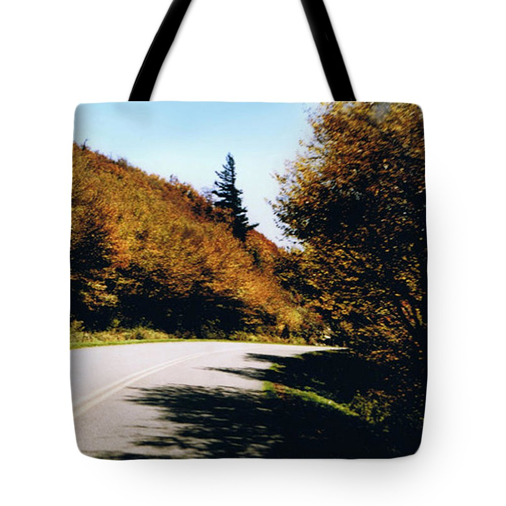 High In The Great Smoky Mtn. As You Round A Curve Stands This Noble Spruce. Tote Bag featuring the photograph Single Spruce by Seth Weaver