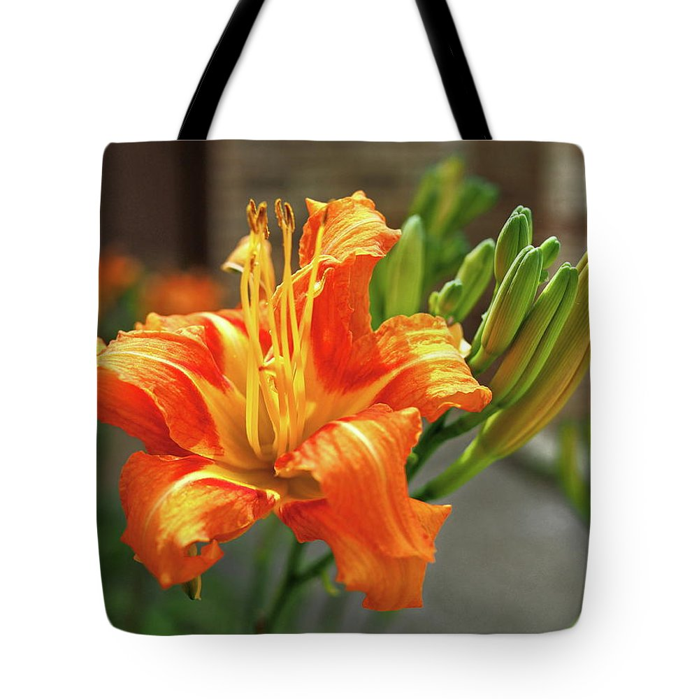 Orange Tote Bag featuring the photograph Spring Flower 14 by C Winslow Shafer