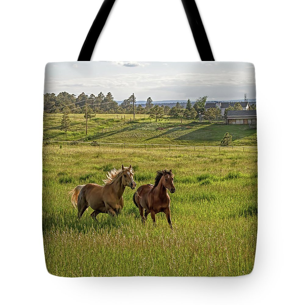 Horses Tote Bag featuring the photograph Summer Run by Alana Thrower