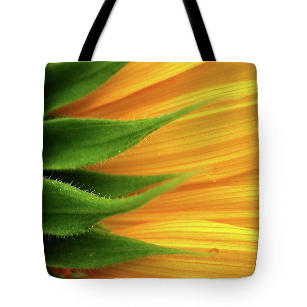 Sunflower Tote Bag featuring the photograph Sunflower by Trevor Slauenwhite