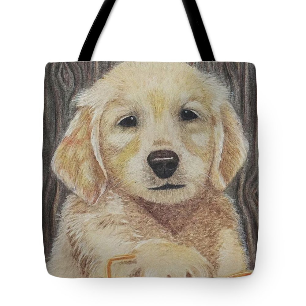 Wall Art Tote Bag featuring the pastel That Cozy Spot by Chris Naggy