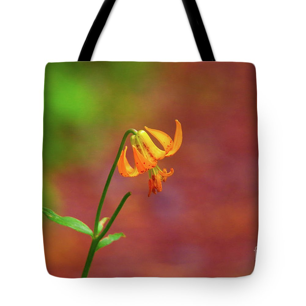 Designs Similar to Tiger Lily In An Alpine Meadow