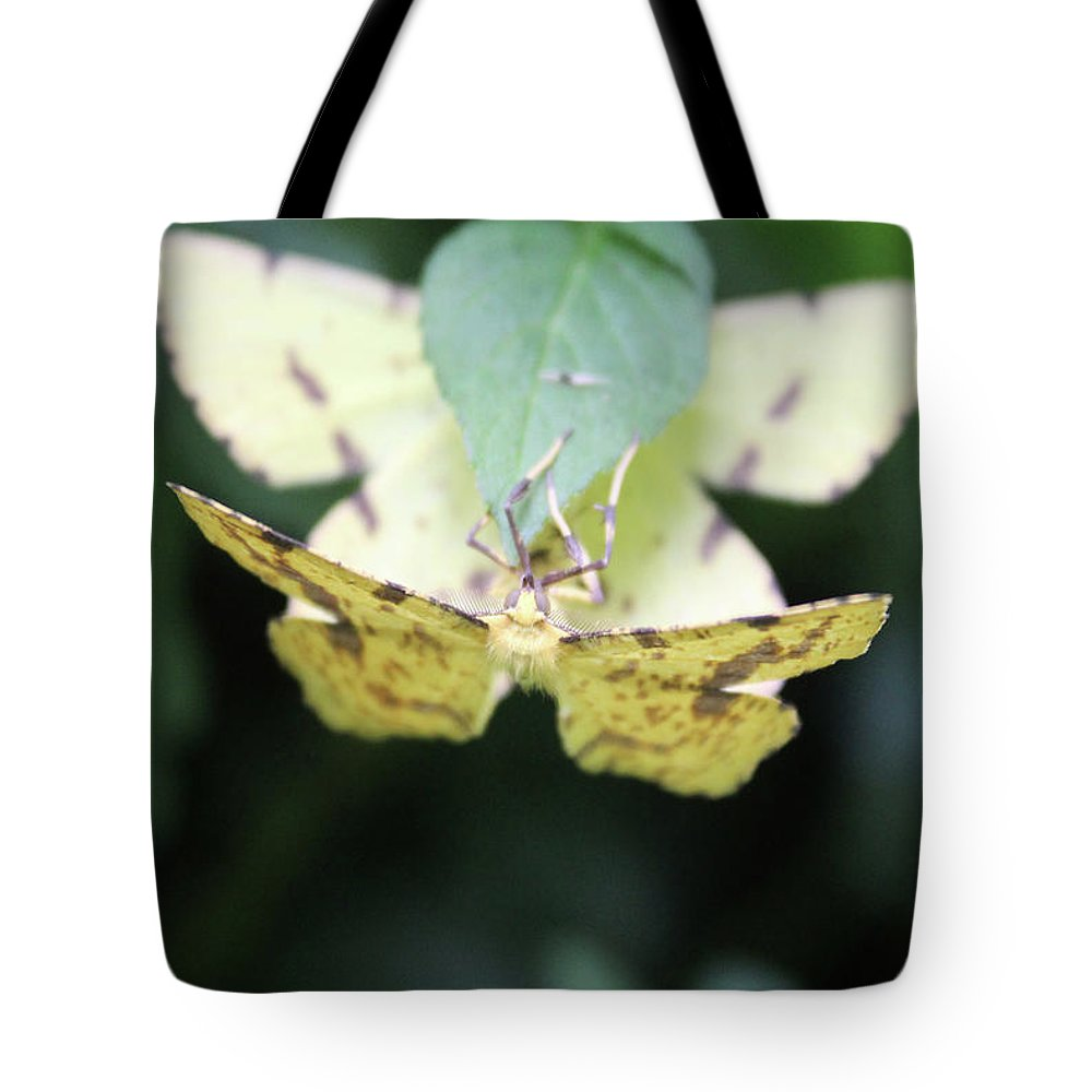 Close Up Tote Bag featuring the photograph two by Holly Morris