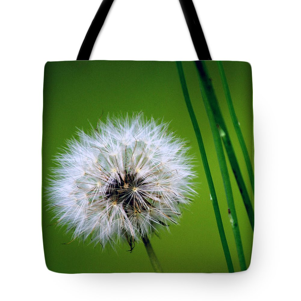 Dandelion Tote Bag featuring the photograph Waiting for the Winds of Deliverance by Holly Kempe