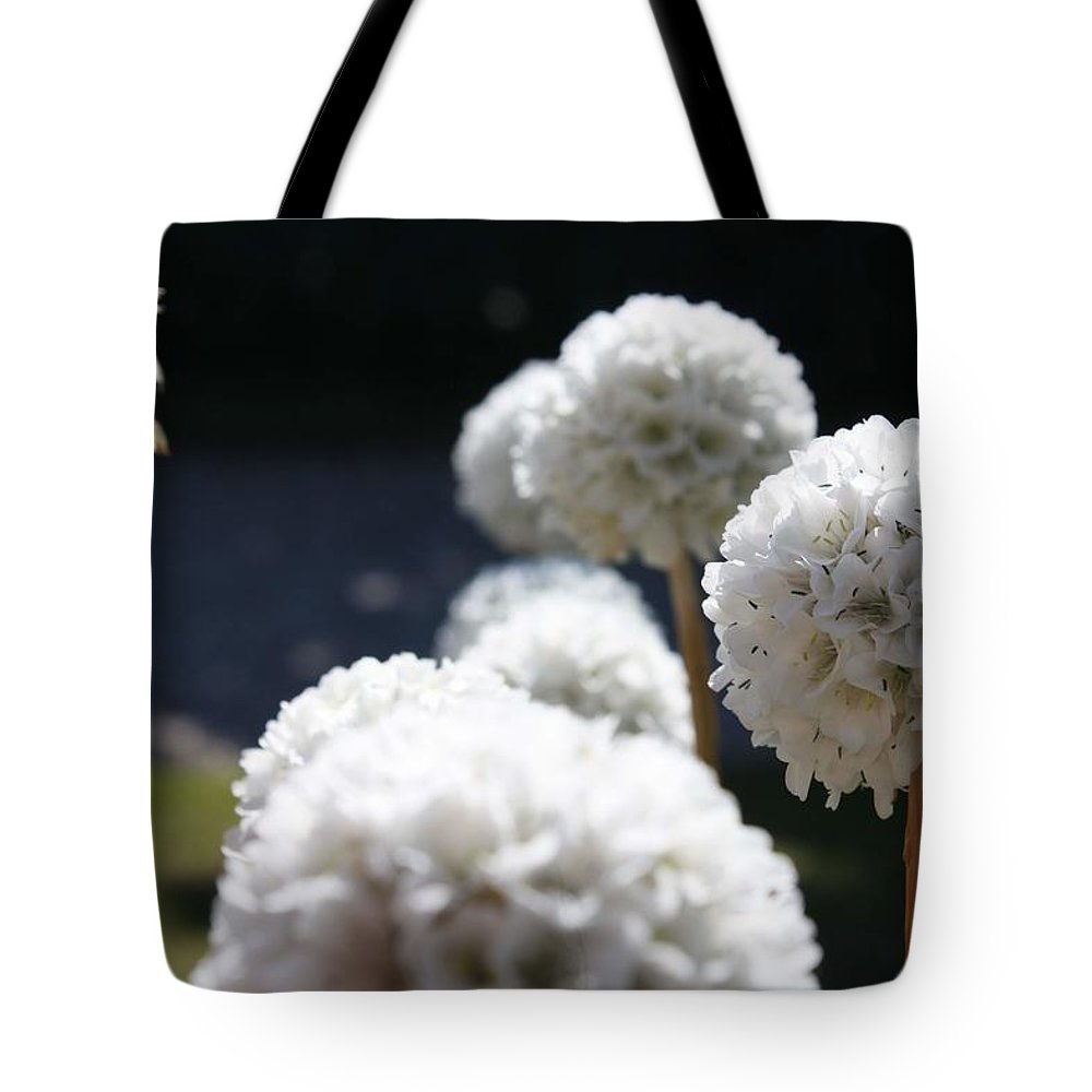 Aliums Tote Bag featuring the photograph White Aliums by Vicki Cridland