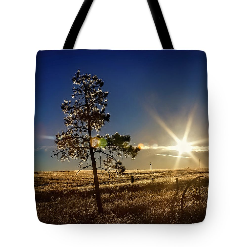 Landscape Tote Bag featuring the photograph Winter Sun by Alana Thrower