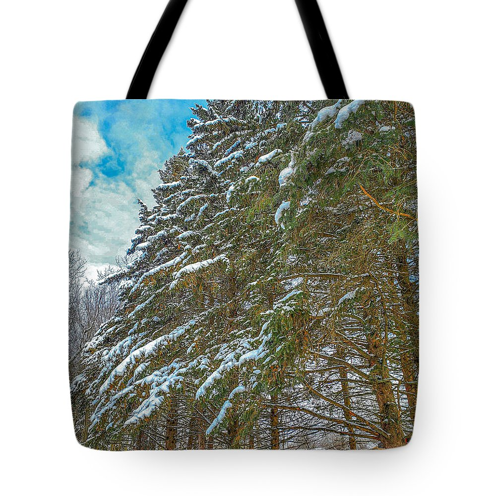 Nature Tote Bag featuring the photograph Winter trees by M Forsell