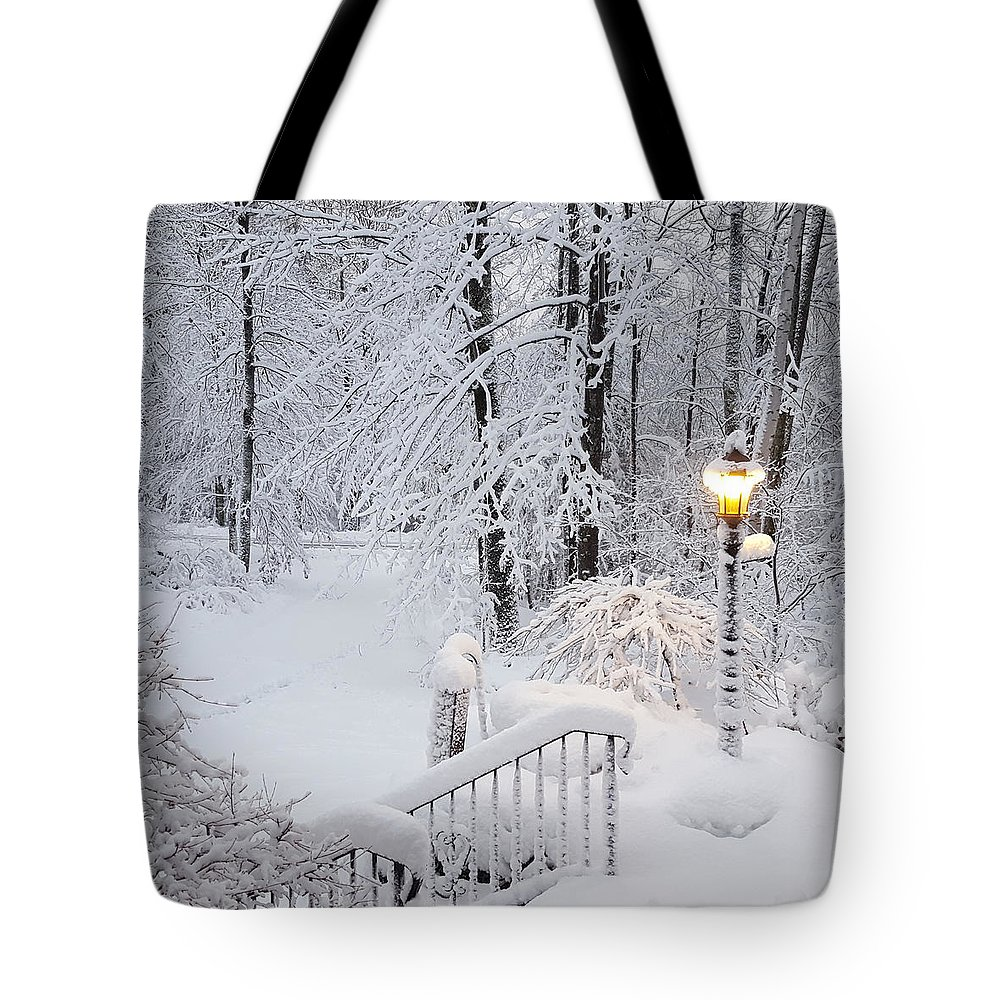 Winter Tote Bag featuring the photograph Winter by Trevor Slauenwhite