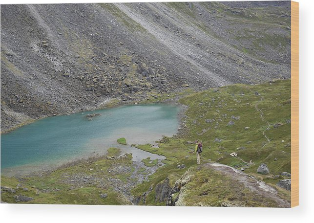 Caucasian Ethnicity Wood Print featuring the photograph Backpacking In Alaska Talkeetna by HagePhoto