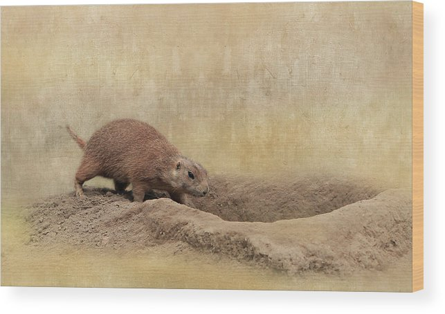 Animal Wood Print featuring the photograph Away Quickly by Heike Hultsch