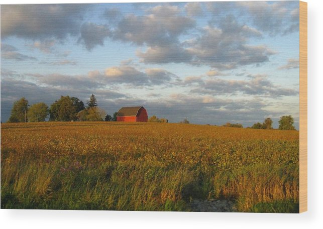 Landscape Wood Print featuring the photograph Country Backroad by Rhonda Barrett