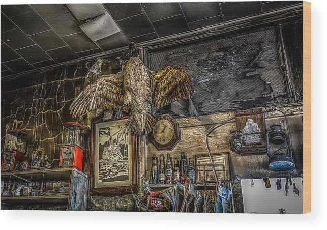 Goose Wood Print featuring the photograph Goose On The Wall by Ray Congrove