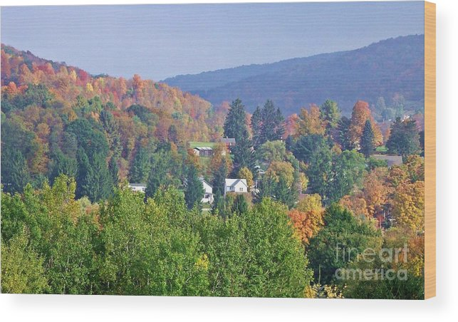 Western Ny State Wood Print featuring the photograph Nesting In The Hills by Christian Mattison