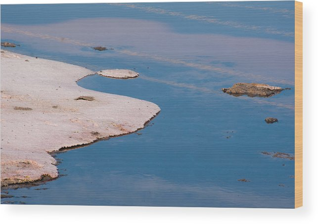 Salt Pond Wood Print featuring the photograph Salt Pond 2 by Catherine Lau