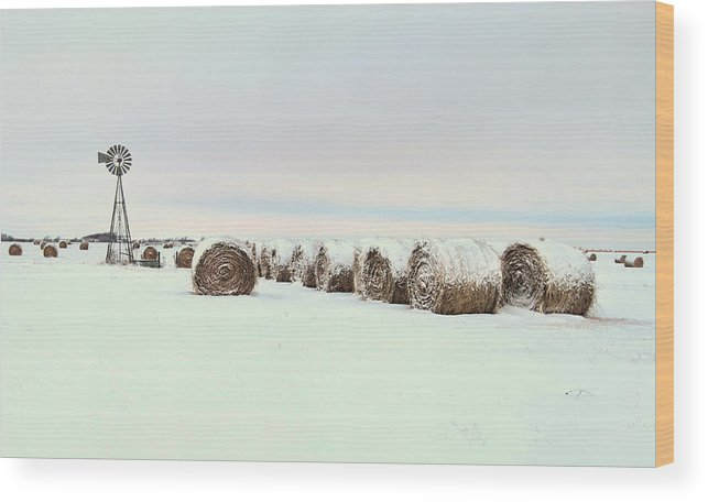 Kansas Wood Print featuring the photograph Snow Covered Round Bales by Chris Harris