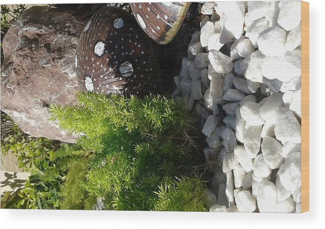 Nature Pebbles Stone Mashrooms Wood Print featuring the photograph Pebbles by Maha Ahmed