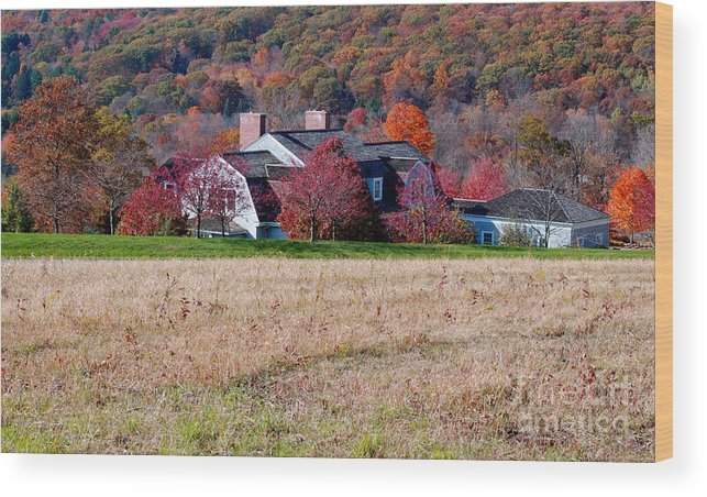 Autumn Wood Print featuring the photograph Autumn House by Andrea Simon