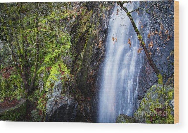 Bridal Veil Falls 3 Wood Print featuring the photograph Bridal Veil Falls 3 by Mitch Shindelbower