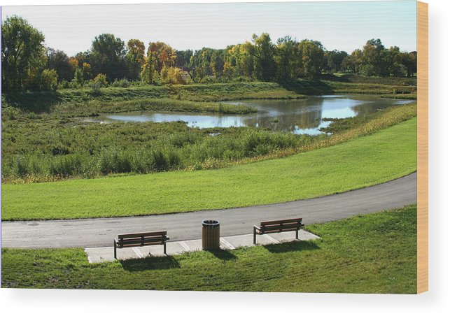Landscape Wood Print featuring the photograph Greenway by Steve Augustin
