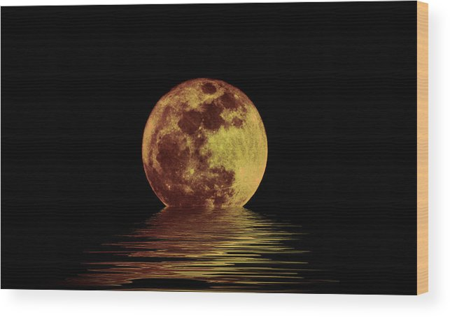 Moonlight On The Bay Wood Print featuring the photograph Moonlight On The Bay by Bill Cannon