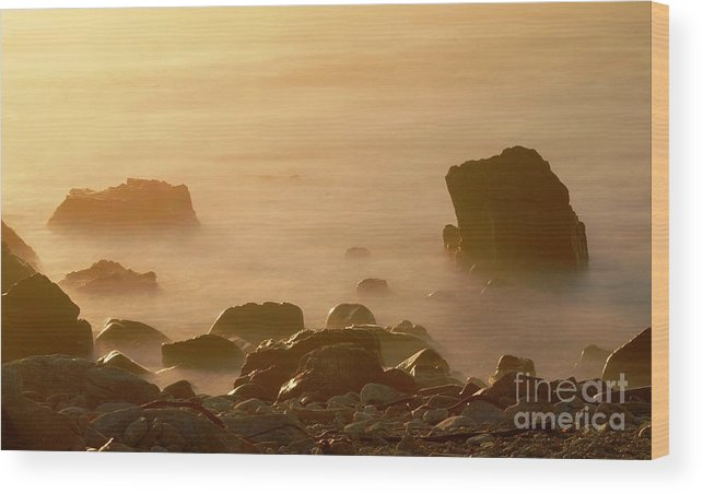 Rock Wood Print featuring the photograph Pepple Beach by Catherine Lau